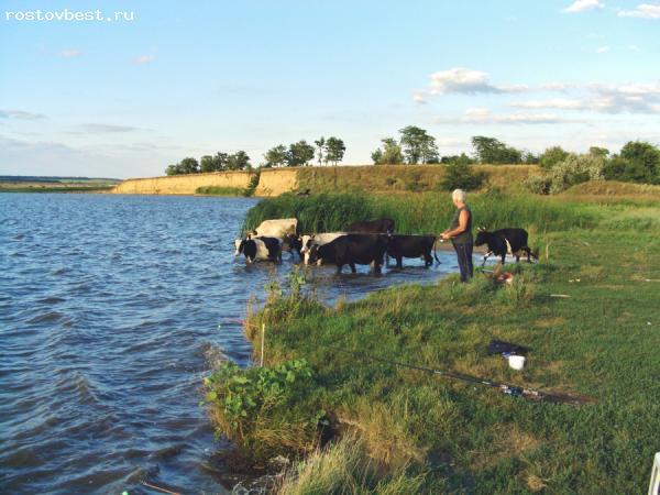 рыбалка в таганроге и пригороде